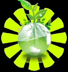 Dentifrici vegà totalment reciclable i ecològic