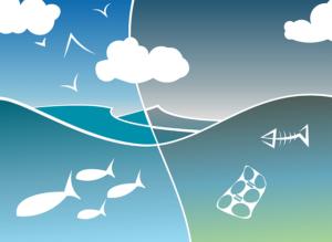 Els oceans están contaminats degut al plástic i això afecta al medi ambient
